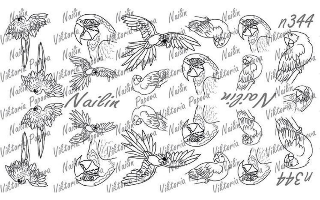 Nailin Wrap design 344