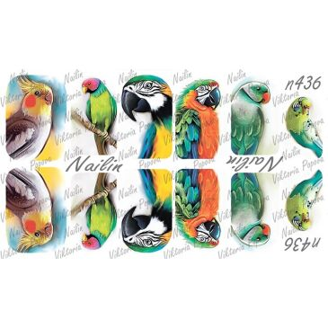 Nailin Wrap design 436